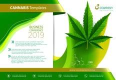 Vector de la planta de marijuana y de las botellas de aceite del c??amo ilustración del vector
