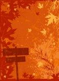 Vector de la tarjeta de Grunge Fotografía de archivo