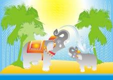Vector de la tarjeta de los elefantes Fotografía de archivo libre de regalías