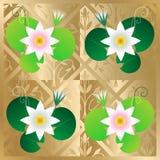 Vector de la tarjeta del loto Imagen de archivo