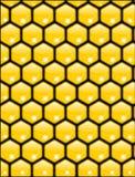 Vector de la textura del panal Fotografía de archivo libre de regalías