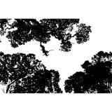 Vector de la vegetación Fotos de archivo