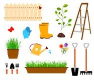 Vector de las herramientas que cultivan un huerto libre illustration