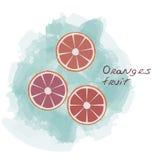 Vector de las naranjas Foto de archivo