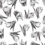 Vector de Lentebloemen Bloemen naadloos patroon Uitstekende achtergrond met Hand Getrokken Tulpen Inkt Pen Drawing Stock Foto