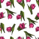 Vector de Lentebloemen Bloemen naadloos patroon Uitstekende achtergrond met Hand Getrokken Tulpen Inkt Pen Drawing Royalty-vrije Stock Afbeeldingen