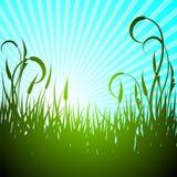 Vector de lenteillustratie met groene bloem Stock Afbeelding