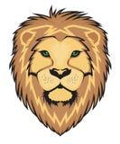 Vector de Lion Face Fotografía de archivo libre de regalías
