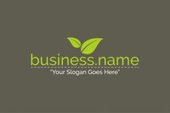 Vector de Logo Nature Green Color Template del negocio Imagen de archivo