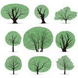 Vector de los árboles ilustración del vector