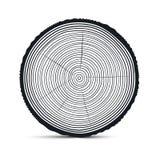 Vector de los anillos de árbol Fotos de archivo