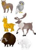 Vector de los animales de la historieta Fotografía de archivo libre de regalías
