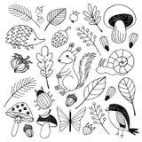 Vector de los animales del bosque aislado en el fondo blanco Imagen de archivo libre de regalías