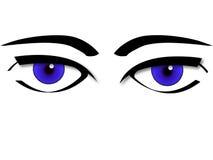 vector de los ojos Imagen de archivo libre de regalías