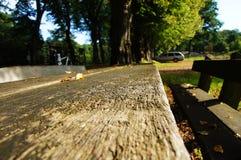 Vector de madera en el bosque - Holztisch im Wald Imágenes de archivo libres de regalías