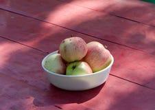 Vector de madera rojo de la fruta sana ecológica del manzano Imagenes de archivo
