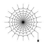 Vector de Spiderweb aislado Fotografía de archivo libre de regalías
