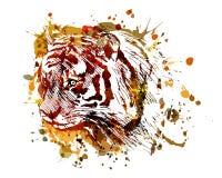 Vector de tijgerhoofd van de kleurenillustratie Royalty-vrije Stock Afbeeldingen
