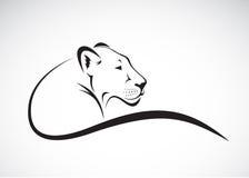 Vector de un diseño femenino del león en el fondo blanco Fotos de archivo