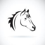 Vector de una cabeza de caballo en el fondo blanco Fotografía de archivo libre de regalías