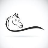 Vector de una cabeza de caballo en el fondo blanco Animal Fotos de archivo