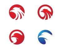 Vector de Wing Logo Template del halcón Imagen de archivo libre de regalías