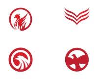 Vector de Wing Logo Template del halcón Fotografía de archivo libre de regalías