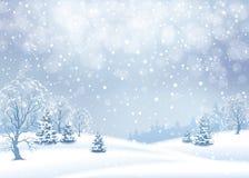 Vector de winterlandschap stock illustratie