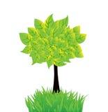 Vector de zomerachtergrond met boom en gras stock illustratie