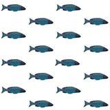 Vector decoratief patroon met blauwe vissen op witte achtergrond Stock Foto