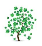 Vector decoratieve boom en groene bladeren vector illustratie
