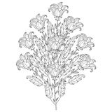 Vector decorative black and white flowers Stock Images