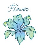 Vector decorative color summer flower. Stock Image