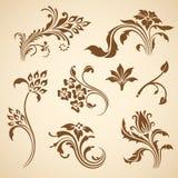Vector decorative elements. Stock Photo