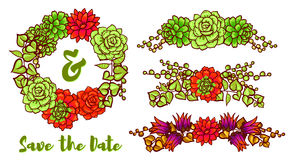 Vector  Decorative floral element of succulents Royalty Free Stock Photography