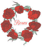 Vector decorative floral garland with red roses Stock Photography