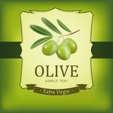 Vector decorative olive branch.For label, pack. Royalty Free Stock Photos