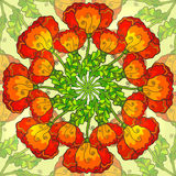 Vector decorative ornate poppy flowers circle Royalty Free Stock Image