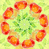 Vector decorative ornate poppy flowers circle Royalty Free Stock Photos