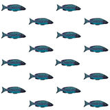 Vector decorative pattern with blue fish on white background Stock Photo