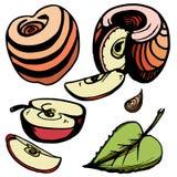 Vector decorative red apples: whole, cut, half, lobe, leaf, seed stock illustration