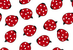 Vector decorative seamless texture with beautiful colorful ladybugs Royalty Free Stock Images
