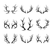 Vector deer antlers isolated on white Royalty Free Stock Photography
