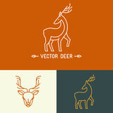 Vector deer logo template in trendy linear style Stock Photo
