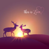 Vector deer silhouette Royalty Free Stock Image