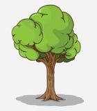 Vector del árbol Fotos de archivo