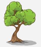 Vector del árbol Imágenes de archivo libres de regalías