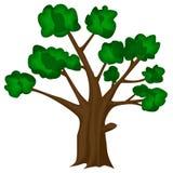 Vector del árbol Imagen de archivo