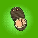 Vector del arte pop del coco Fotos de archivo