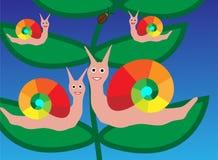 Vector del caracol de la familia Imagen de archivo libre de regalías